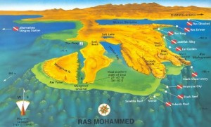 ras mohamed immersioni