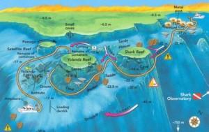 ras mohamed shark & yolanda reef