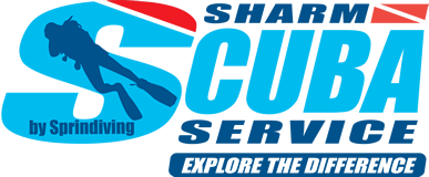 Sharm Scuba Service by Sprindiving